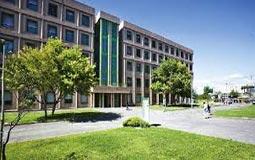 دانشگاه تور ورگاتا