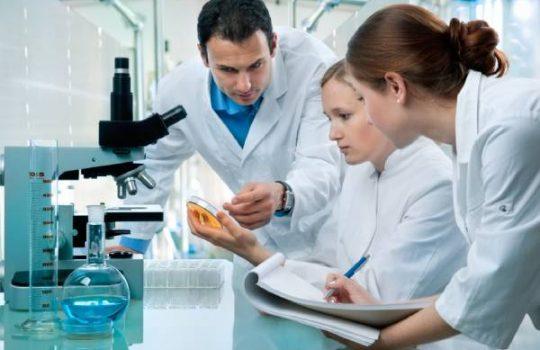 معرفی رشته مهندسی پزشکی در ایتالیا